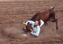 Red Lodge Rodeo Steer Wrestling