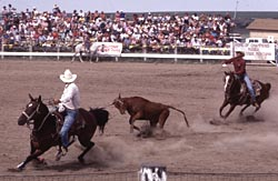 Red Lodge Rodeo Team Roping